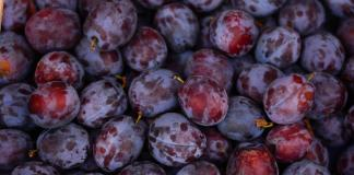 buah mengenal Allah #5 ridho