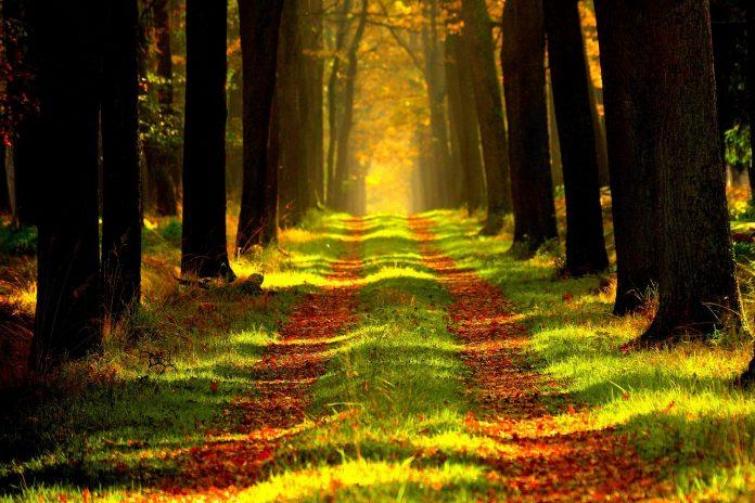 Mengenal Allah Lebih Dekat 38 Jalan Menuju Ikhlas