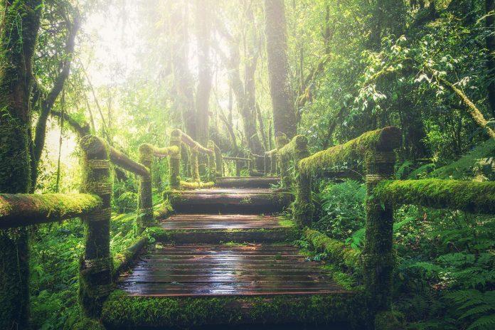Mengenal Allah Lebih Dekat Hijrah Di Jalan Allah
