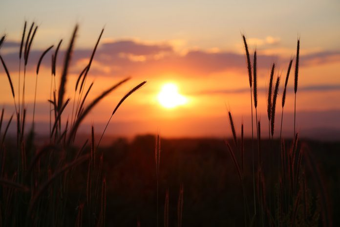 Mendalami Amalan Hati 58 Mengagungkan Allah dan Hidupnya Hati